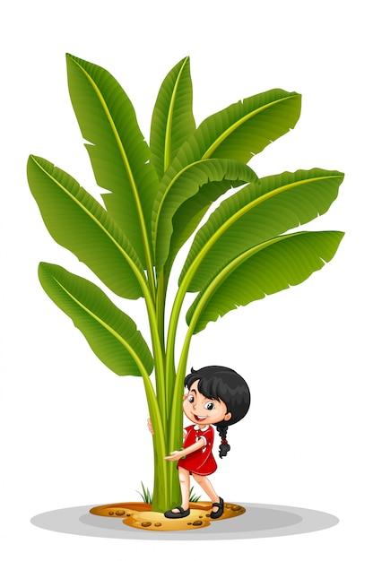 Little girl and banana tree Free Vector
