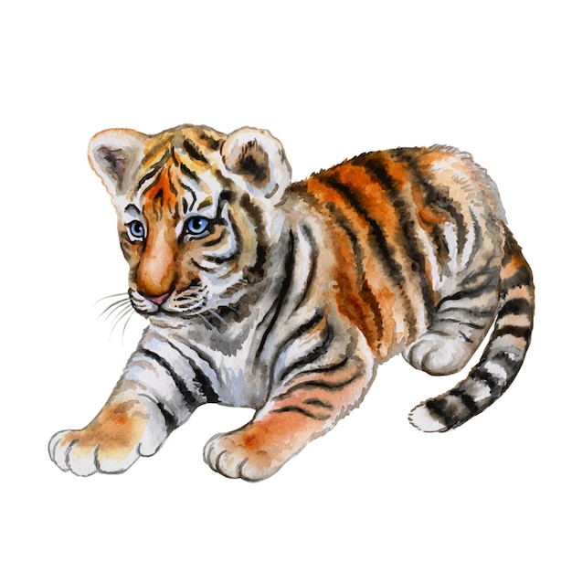 Little tiger isolated. watercolor Premium Vector