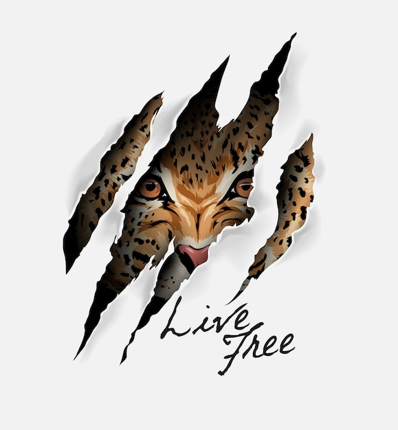 Live free slogan with leopard face in claw mark illustration Premium Vector