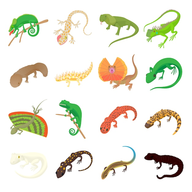 Lizard icons set in cartoon style on a white background Premium Vector