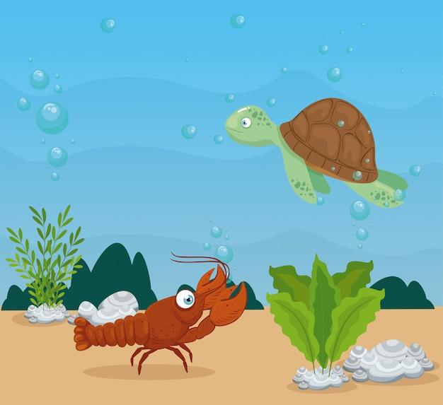 海のカメと海洋動物、シーワールドの住人、かわいい水中の生き物、海中の動物がいるロブスター Premiumベクター