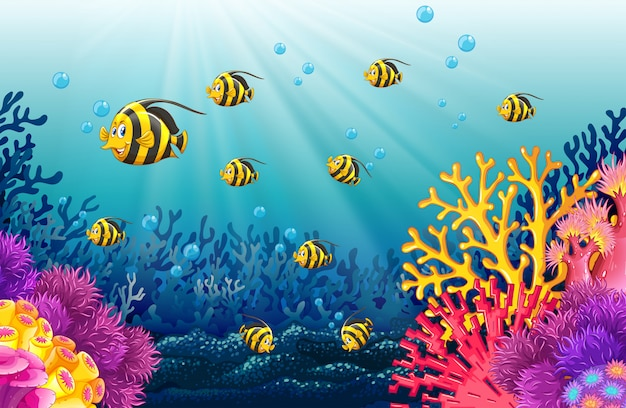 Lots of fish under the sea Free Vector