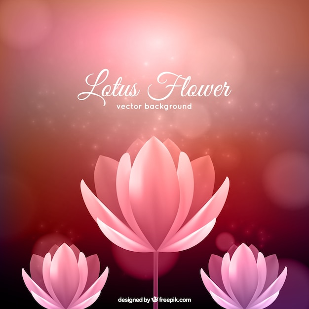 Lotus Flower Background Vector Free Download