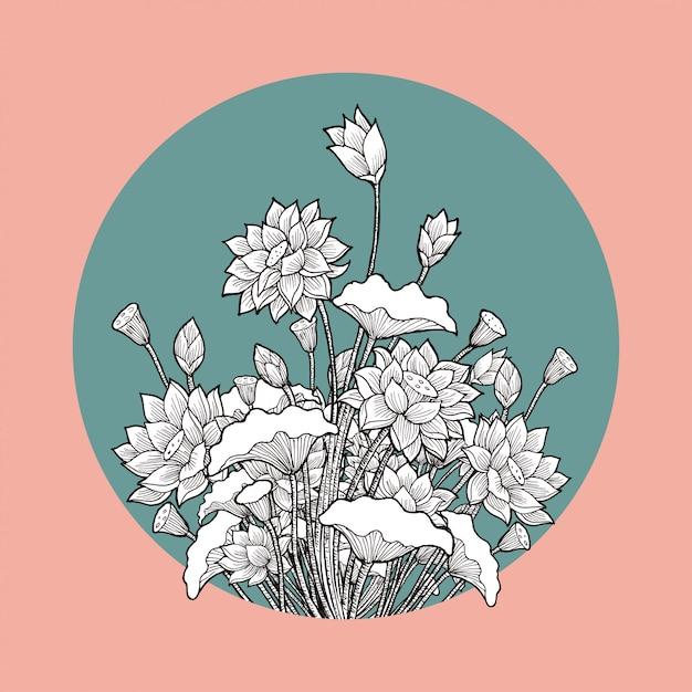 Lotus flower drawing Premium Vector