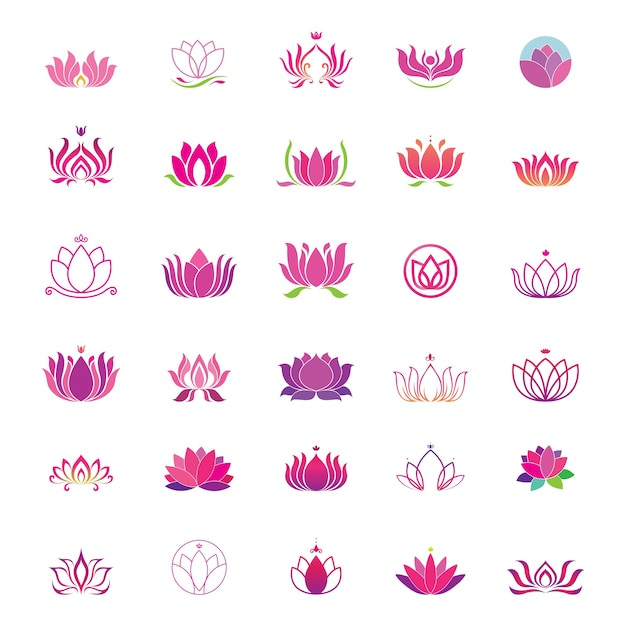 lotus logo set vector premium download
