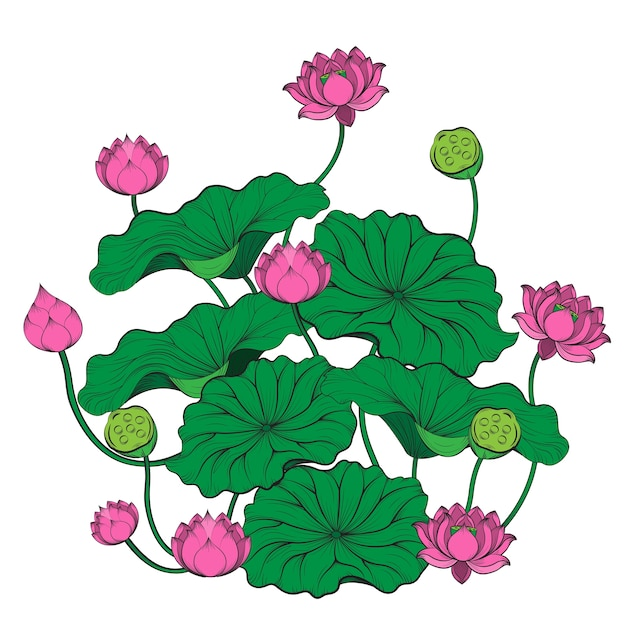 Lotus Tree Vector By Hand Drawing Vector Premium Download