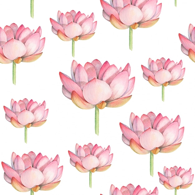 Lotus watercolor seamless pattern Premium Vector