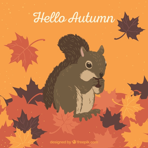 Lovely autumnal composition with squirrel Free Vector