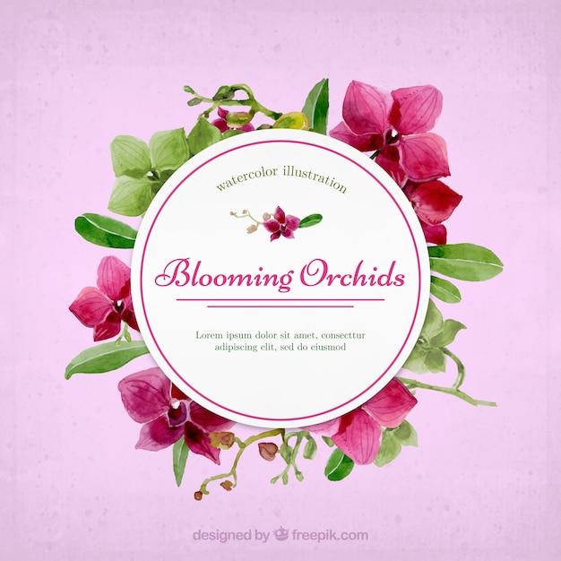 ラブリー咲く蘭の花のフレーム 無料ベクター