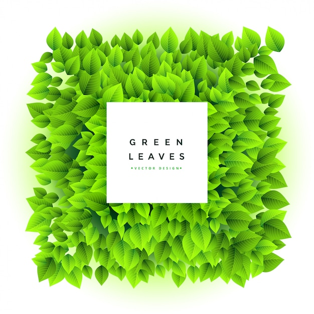 Lovely green leaves bunch frame background Free Vector