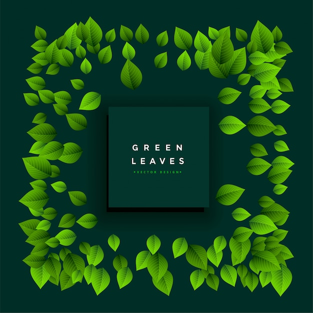 Lovely green leaves frame with text space Free Vector