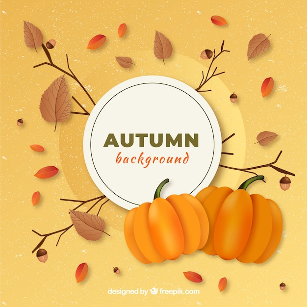 Lovely hand drawn autumn elements and leaves background Free Vector