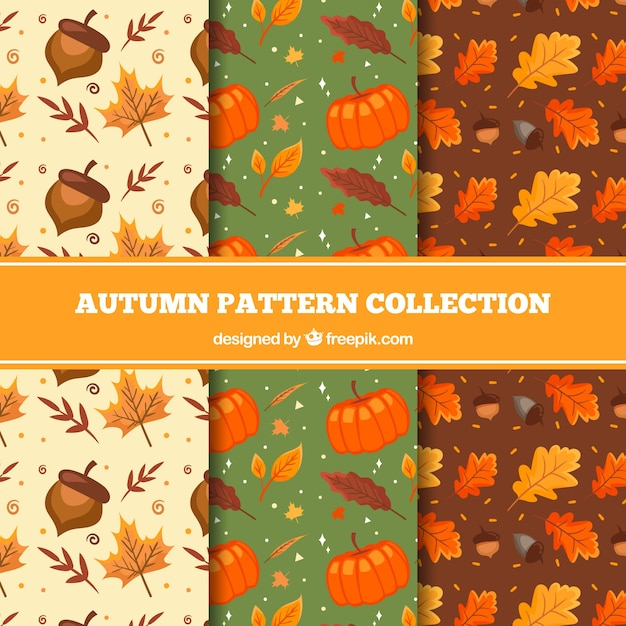 Lovely hand drawn autumn pattern collection Free Vector