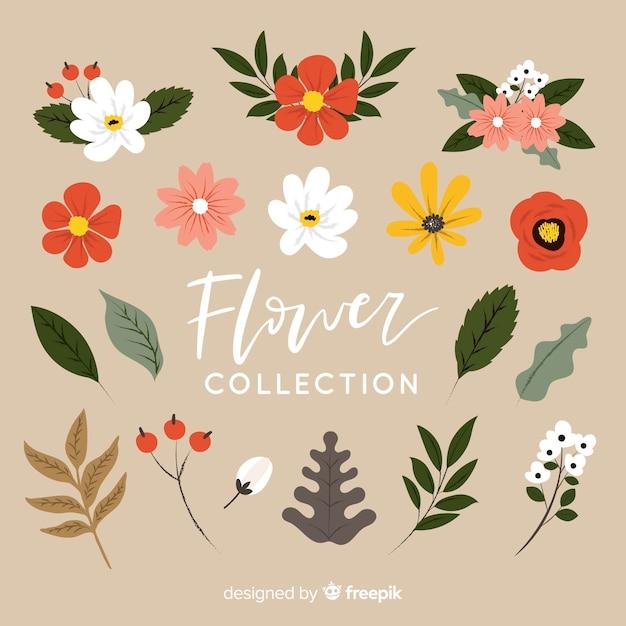 Прекрасная коллекция рисованных цветов Premium векторы