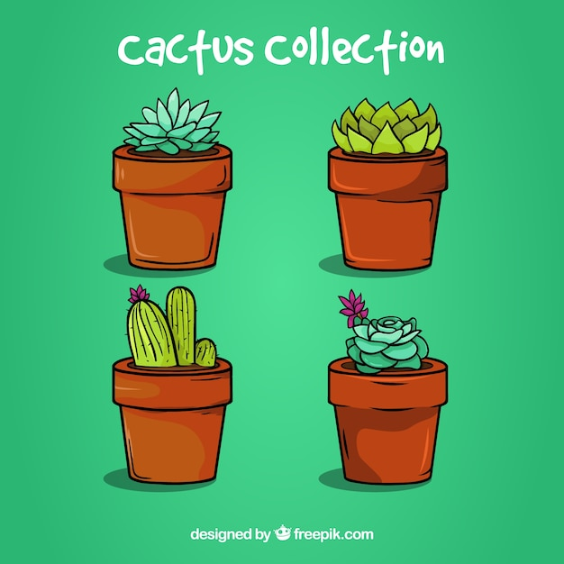Pacchetto bello di cactus colorato Vettore gratuito