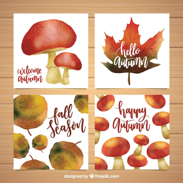 Lovely pack of watercolor autumn cards