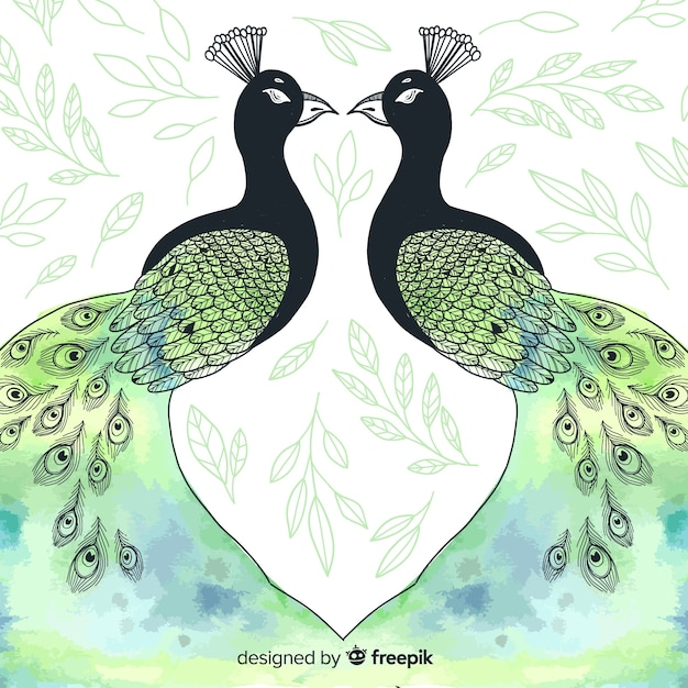 Lovely peacock in watercolor style Free Vector