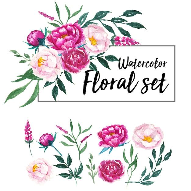 Lovely watercolor floral set Premium Vector