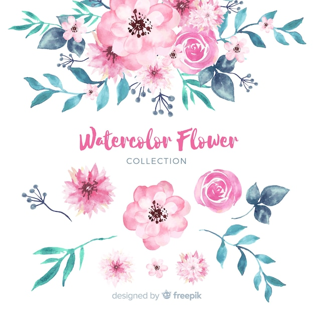 Lovely watercolor flowers collection Free Vector