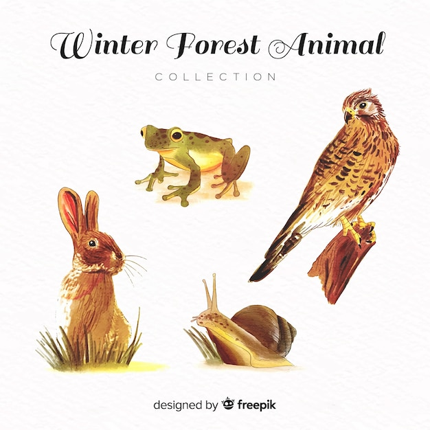 Lovely watercolor winter animal collection Free Vector