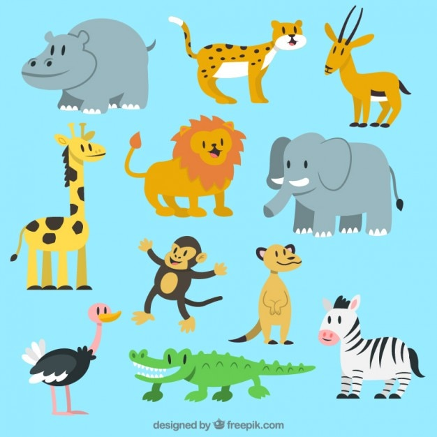 Lovely wild animal collection