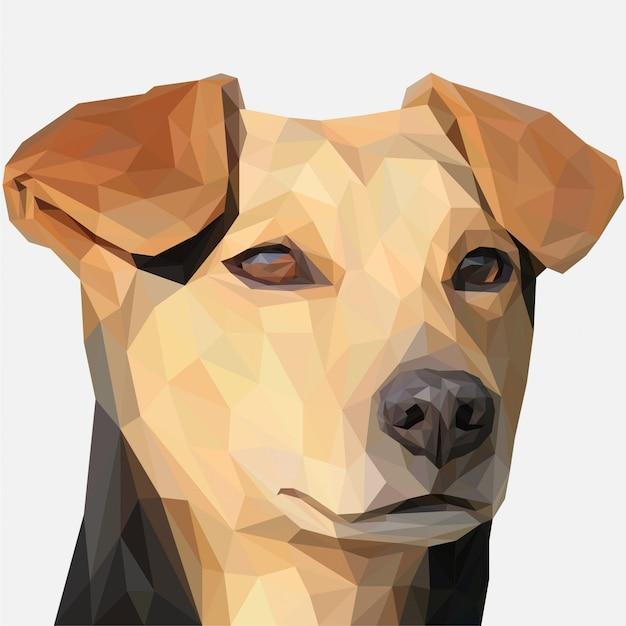 Lowpoly of brown dog head Premium Vector