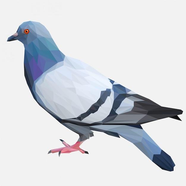 Lowpolyスタイルの鳩鳥 Premiumベクター