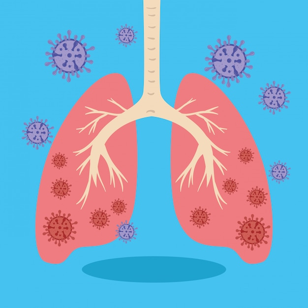 肺とコロナウイルス2019 ncovイラスト 無料ベクター
