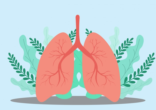 Lungs . Premium Vector