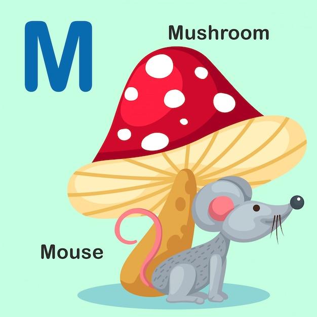 イラスト分離動物アルファベット文字m-マウス、きのこ Premiumベクター