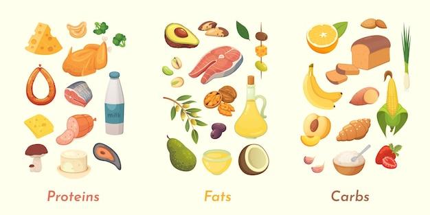 Иллюстрация макронутриентов. основные группы продуктов питания: белки, жиры и углеводы. диета, концепция здорового питания. Premium векторы