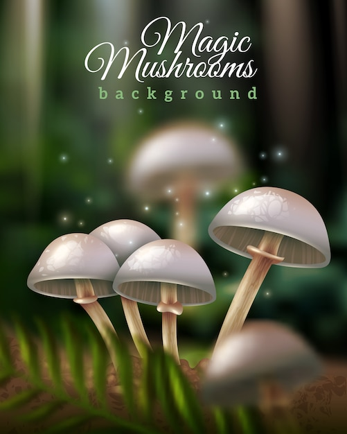 Magic mushrooms background Free Vector