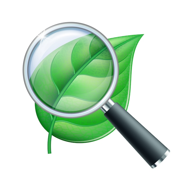 Magnifying glass and leaf Premium Vector