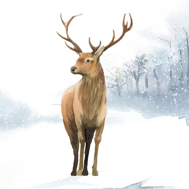 Male deer painted by watercolor vector Free Vector
