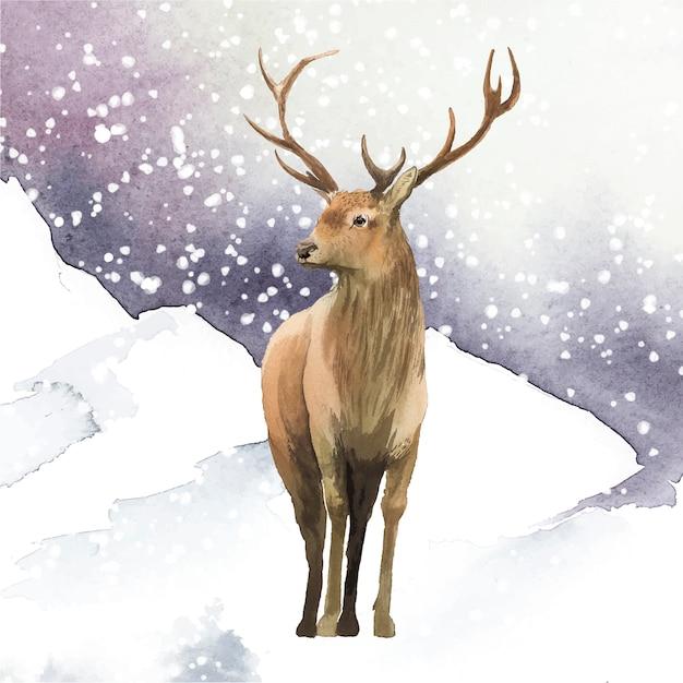 Мужской олень, нарисованный акварельным вектором Бесплатные векторы