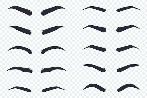 Male and female eyebrows of different shapes Premium Vector