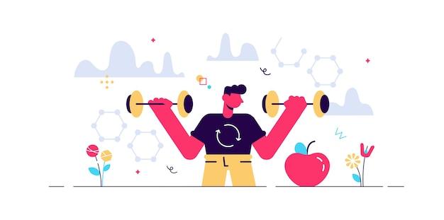 남성 신진 대사 그림. 음식에서 에너지로의 과정. 프리미엄 벡터