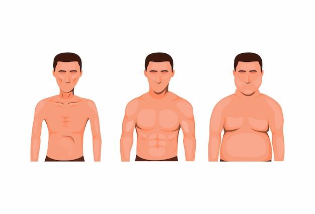 Тип телосложения человека. тощий, толстый и мускулистый. набор иконок символ здоровья питания в мультфильме Premium векторы