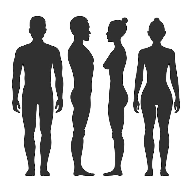 Man and woman vector silhouettes in front and side view. illustration of body male and female illust Premium Vector