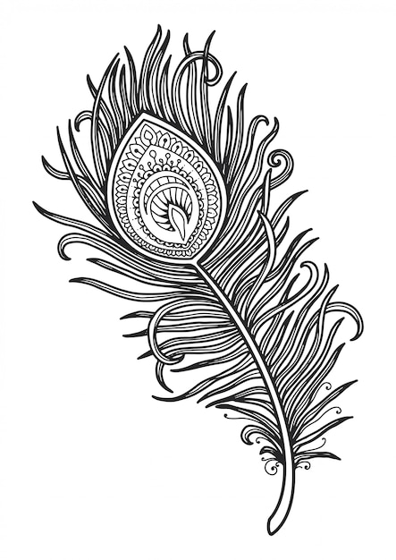 Premium Vector Mandala For Coloring Page Peacock Feather Design.