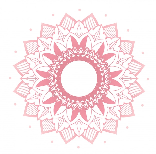 Mandala design on pink color Premium Vector