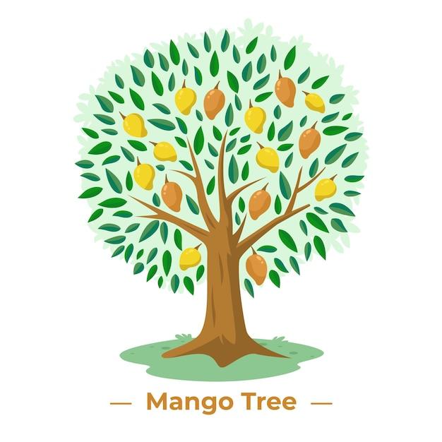 Mango tree in flat design Free Vector