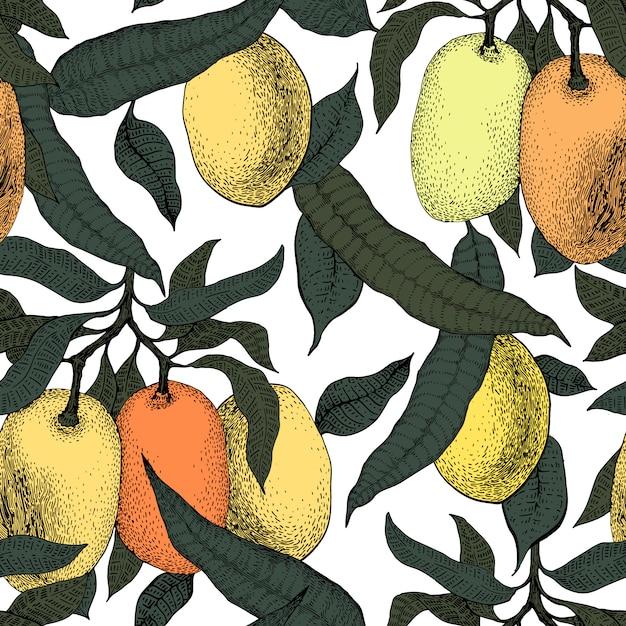 Mango tree vintage seamless pattern. botanical fruit background. engraved. retro illustration Premium Vector