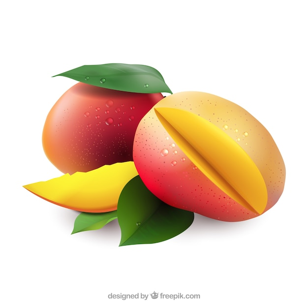 Mangoes in realistic style Free Vector