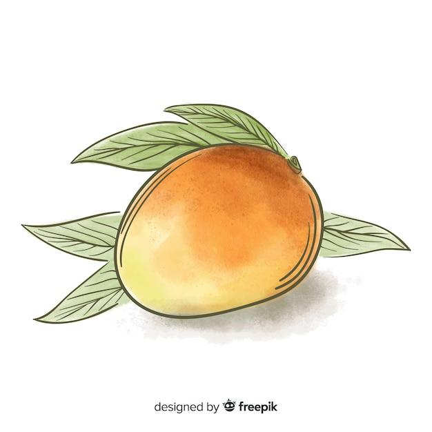 Mangos Free Vector