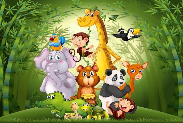 Много животных в бамбуковом лесу Бесплатные векторы