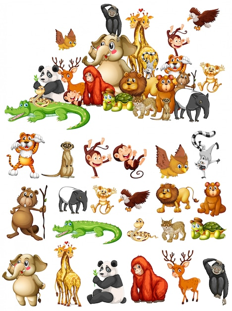 Many animals Free Vector