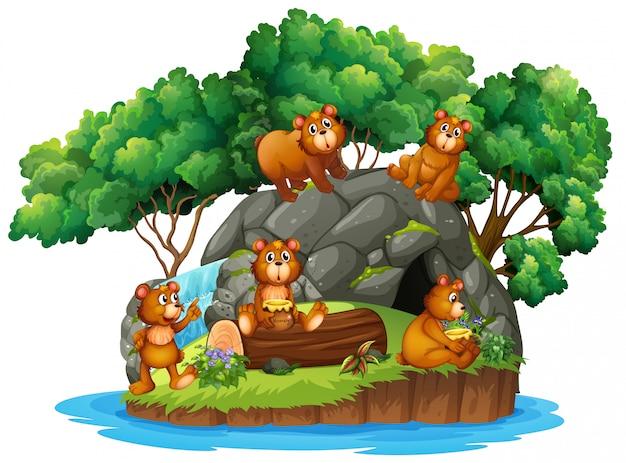 Many bears on the island Free Vector