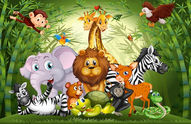 Many cute animals in bamboo forest Free Vector