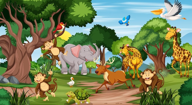 Many different animals in the forest scene Free Vector